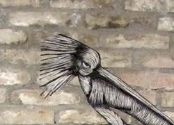 remise_pelican_web