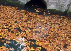 fallen canal st martin